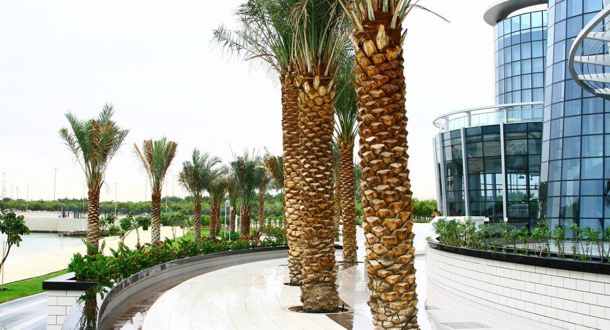 Горящие туры ОАЭ